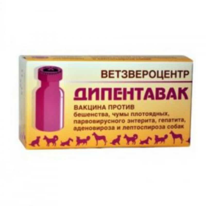 Дипентавак №5 вакцина для собак, 10 доз купить в дискаунтере товаров для животных Крокодильчик